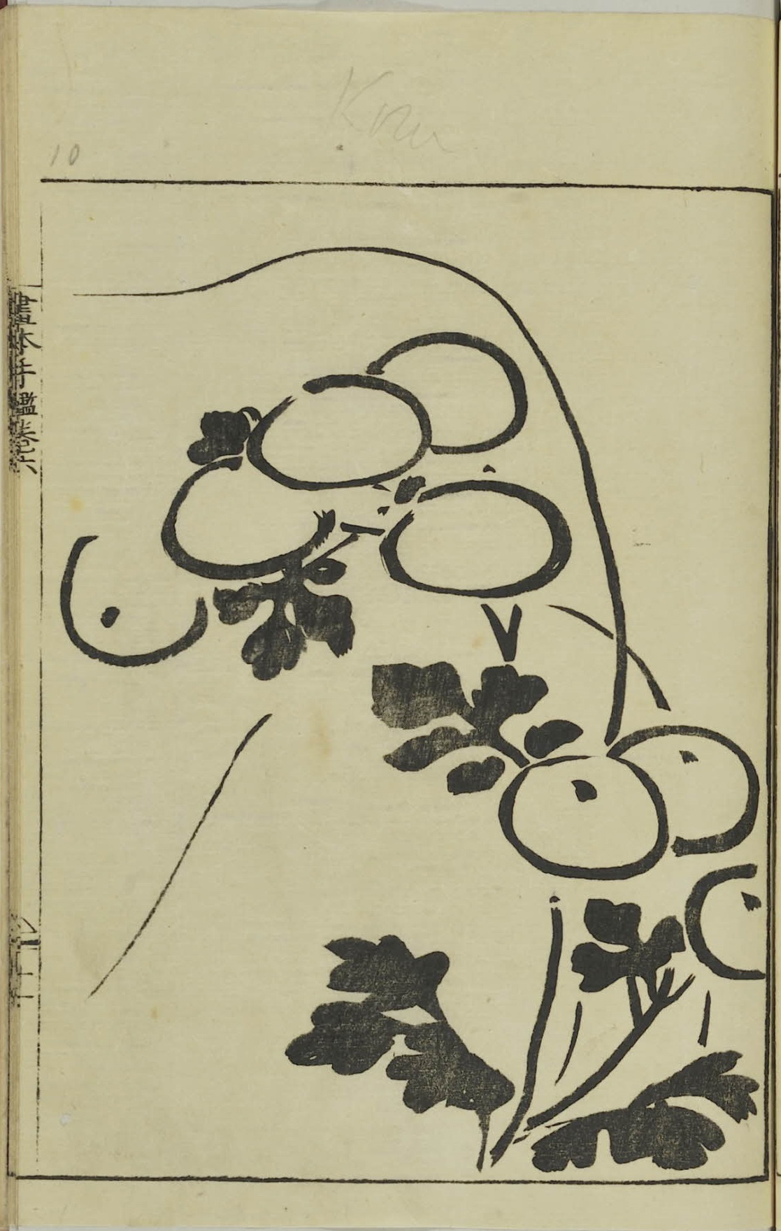 Sartorial Identity: Early Modern Japanese Textile Patterns