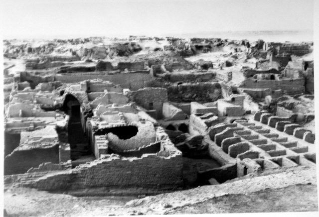 Fig. 1. Excavation photo of Granary C123, showing the vaulted chambers and storage bins in which the sealings were discovered.