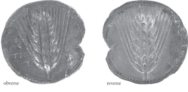 Metapontum, Italy, mid–late sixth century BCE. Silver stater. Silver, Diam. 28.8 mm. Kelsey Museum 1991.2.27. Comparanda: BMC (Catalogue of the Greek Coins in the British Museum) 238.3; SNGANS (Sylloge Nummorum Graecorum: American Numismatic Society) 160