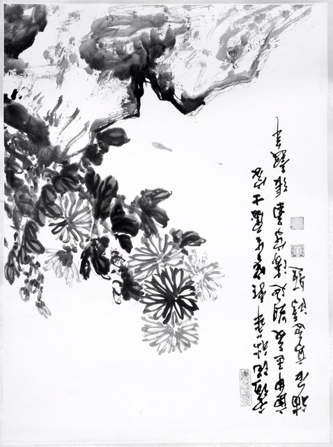 Chang Ku-nian, China (Shanghai, 1906-1987, Flint, Michigan). Chrysanthemum and Rock, 1980. Ink and light color on paper, 67 x 49.8 cm. Gift of Dr. Cheng-Yang and Mrs. Shirley Chang, 2006/1.133