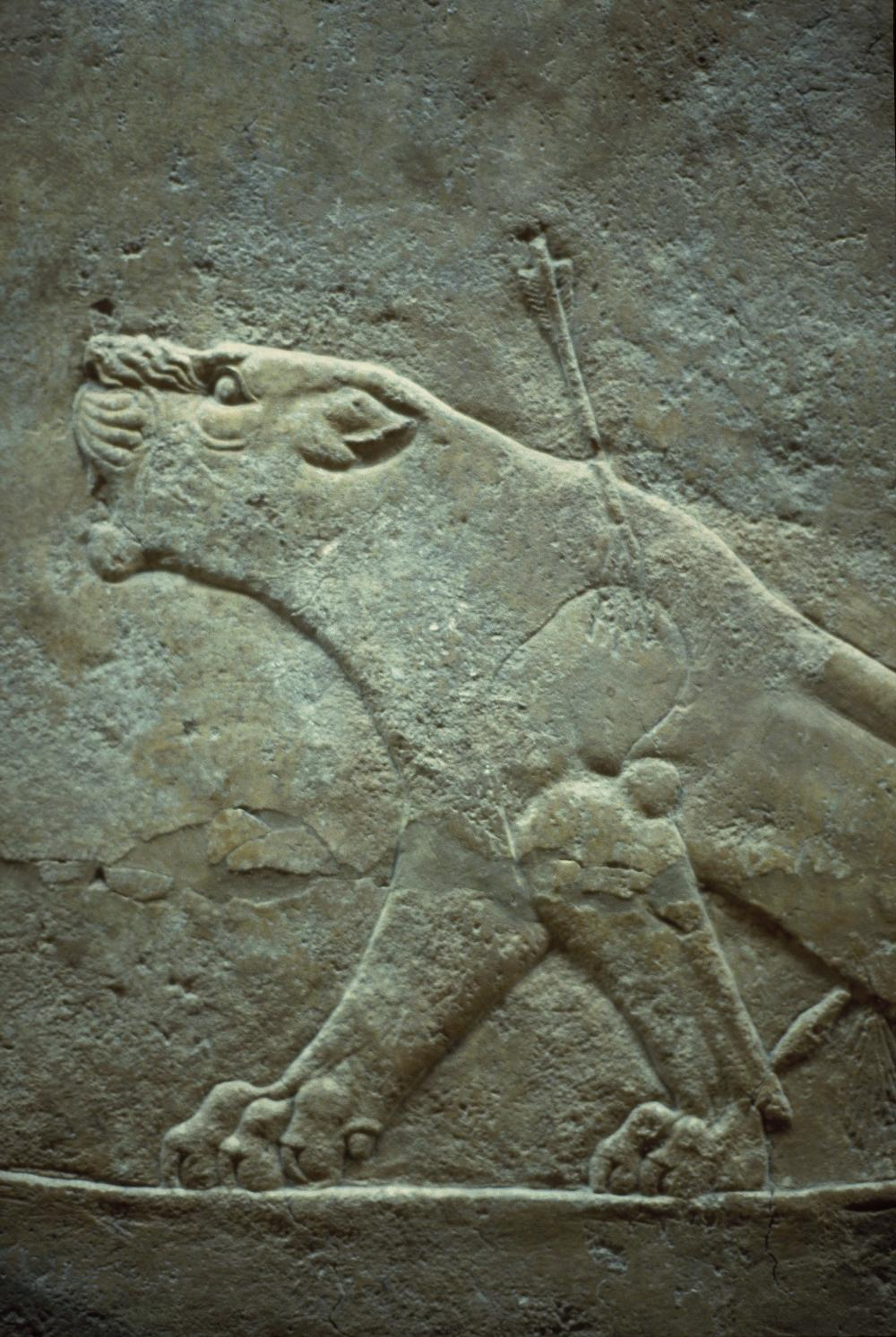 A 5,000 year old Mesopotamian figure called the Guennol ... |Wounded Lioness Mesopotamia Ancient Art