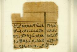 papyrus fragment with writing; Papyri; Papyrus; Ink; undecorated