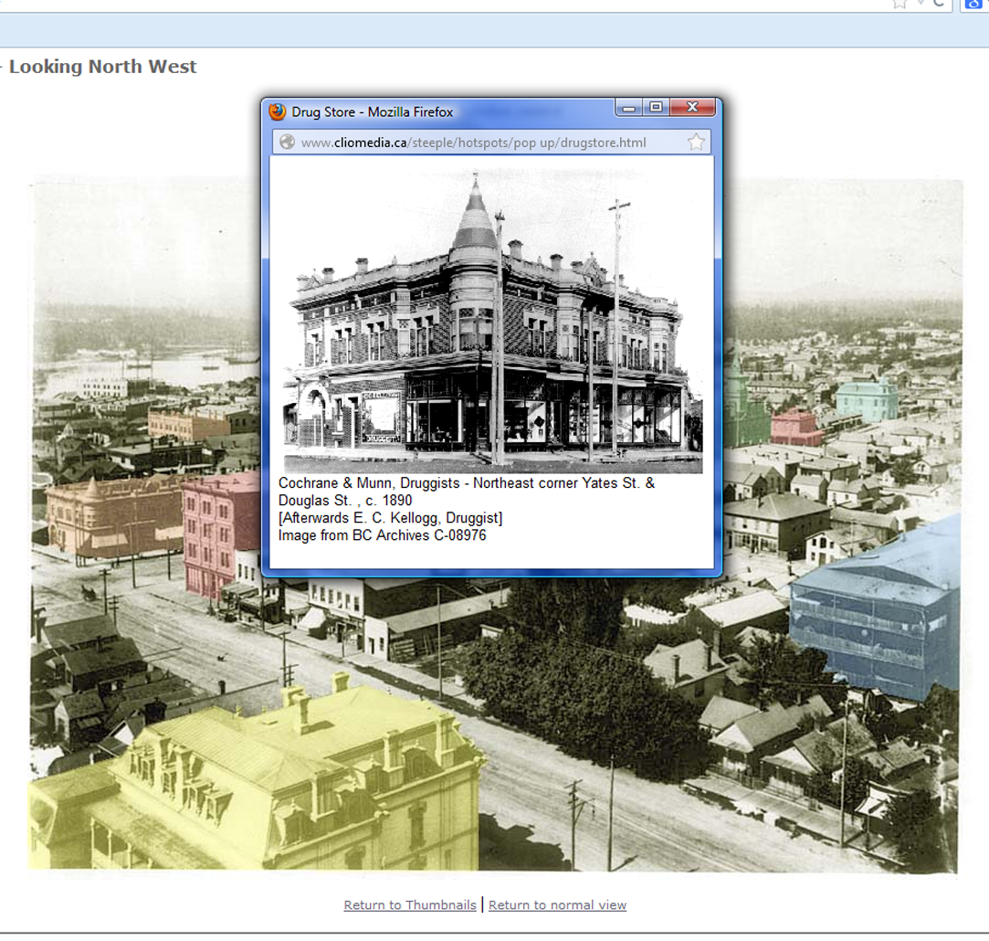Fig 14.3: A screen shot from the Virtual Victoria, view from the steeple website. Screen shot courtesy of the authors.