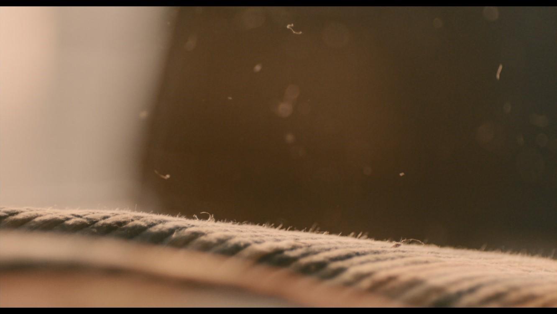 படம் 5: சமந்தாவின் இறுதி மோனோலோகின் போது தூசி துகள்கள்