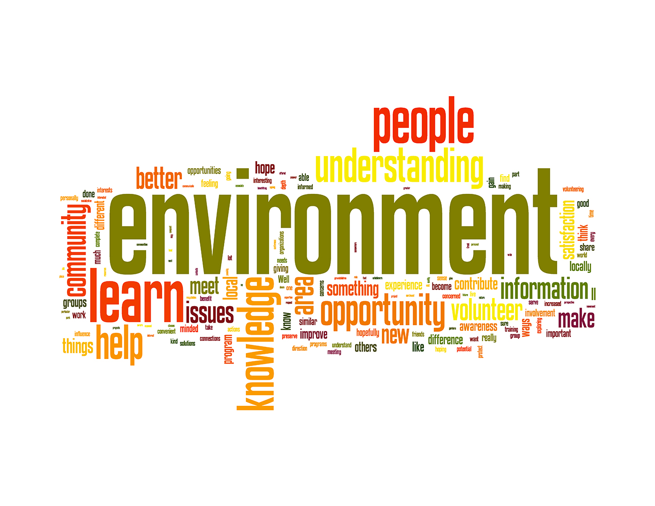 "Figure 10.1. Word Cloud illustrating motivations of RISE participants (N=79). Text size corresponds to word frequency in qualitative responses to ""What do you hope to get out of . . . RISE?"" (www.wordle.net).: Notes: ""environmental"" was changed to ""environment"" and ""learning"" to ""learn"" to create a more integrated Word Cloud. In an effort to create a more parsimonious Word Cloud, we omitted prepositions (e.g., and, but, to, for, of, with) and other small words that did not have meaning by themselves (e.g., the, well, some, somehow, just, mean)."