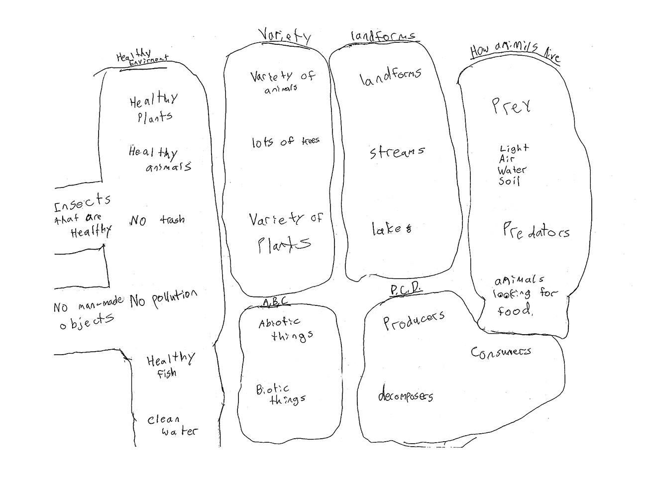 Figure 16.1. A middle school student's cognitive map of a healthy natural environment.