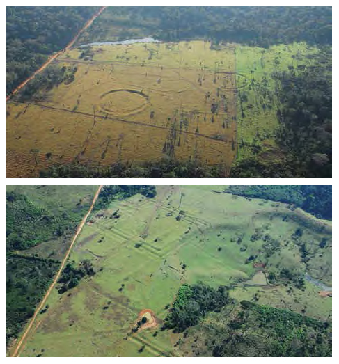 "Fig. 20 Geoglyphs, an urban forest: recent archeological evidences uncovered on deforested areas in Amazonia led to a radical change in the perception of the nature of the forest. Large tracts of Amazonia are today considered ""human-made."""