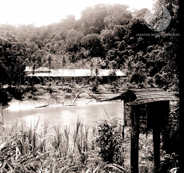 Figure 8: Long Jegan longhouse near the bank of the Tinjar river, 1956. Photograph from the archive of the Sarawak Museum.