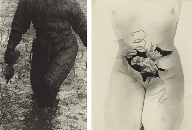Fig. 10. (left) Woman Planting Rice, Toyama Prefecture (1955), by Hiroshi Hamaya, gelatin silver print, © Keisuke Katano, The J. Paul Getty Museum, Los Angeles. Fig. 11. (right) Cold Person (1956), by Kansuke Yamamoto, gelatin silver print, © Toshio Yamamoto, from the collection of Gloria Katz and Willard Huyck.