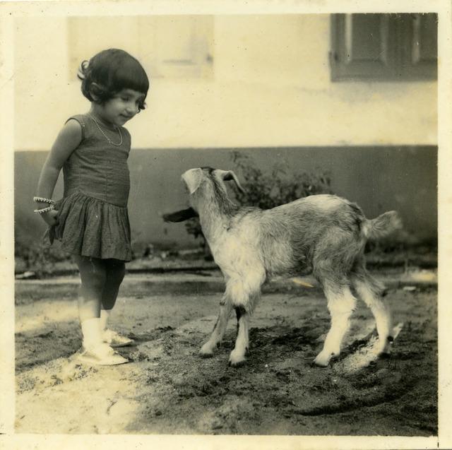 Fig. 13. Haleema Hashim, Naheed Nayeem, 1950s, 6.35 x 6.35 cm., courtesy of Nihaal Faizal.
