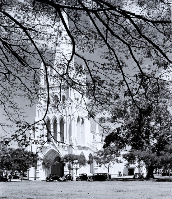 Fig. 3. Artfully framed by a foreground tree, St Andrew's Cathedral is seen here in 1956 from near Coleman Street. Marjorie Doggett, © National Archives of Singapore.