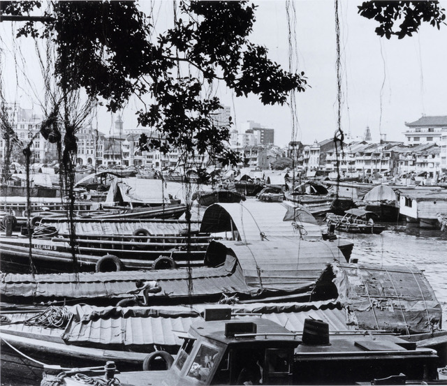 Fig. 7. Framed by a banyan's aerial roots, this 1957 photo looks downstream from the north end of Elgin Bridge. Marjorie Doggett, © National Archives of Singapore.